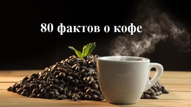 Photo of 80 интересных фактов о кофе: история, легенды и польза